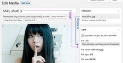 افزونه ویرایش آنلاین نام تصاویر در وردپرس Media File Renamer Pro