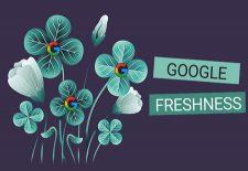 سئو و محتوای جدید   الگوریتم Freshness گوگل را بشناسید!